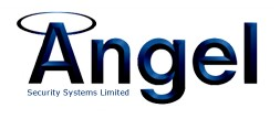 Angel Security Logo