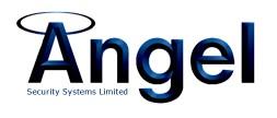 Angel Security Logo
